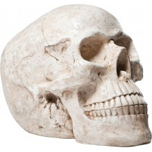 Tirelire Skull Blanc Antique Kare Design