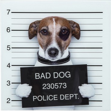 https://www.kare-click.fr/24581-thickbox/tableau-en-verre-bad-dog-40x40cm-kare-design.jpg