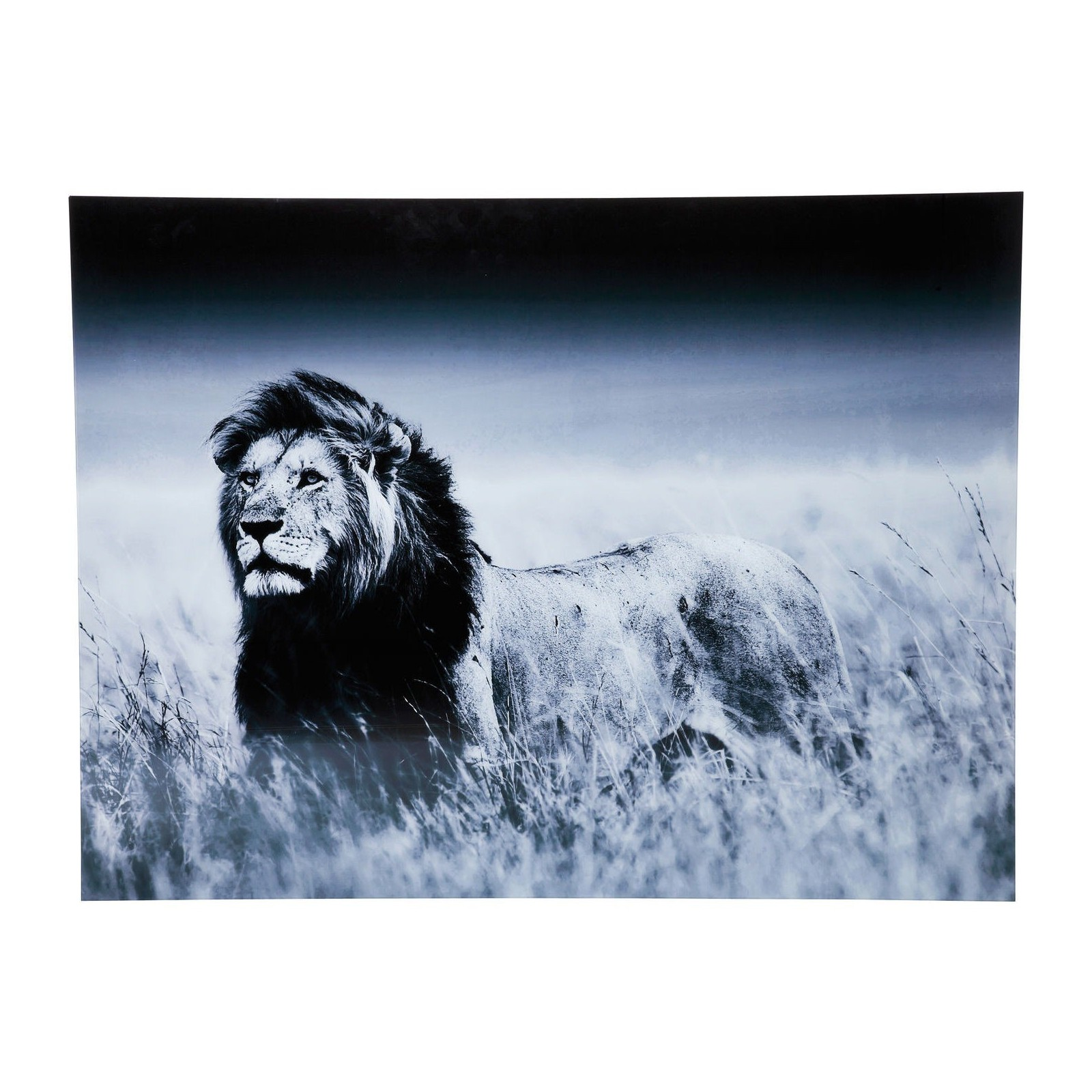 tableau en verre lion king standing 120x160cm kare design. Black Bedroom Furniture Sets. Home Design Ideas