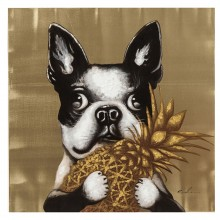 Tableau Touched Dog with Pineapple 80x80cm Kare Design
