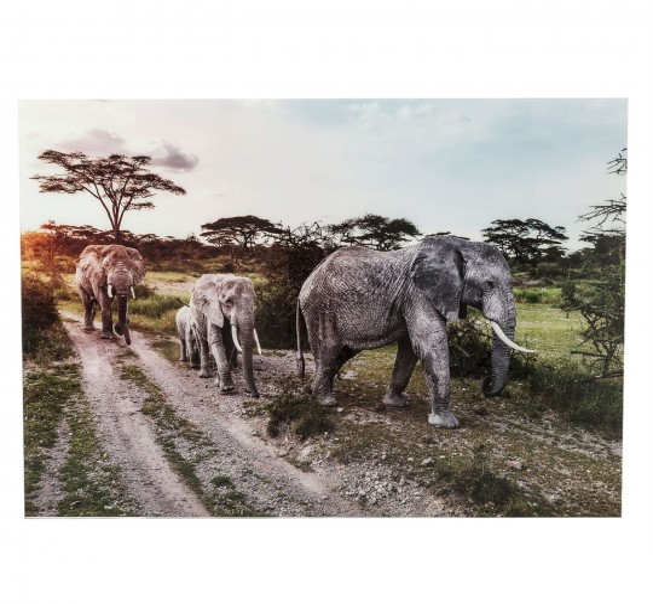 Tableau en verre Elefant Family 160x120cm Kare Design