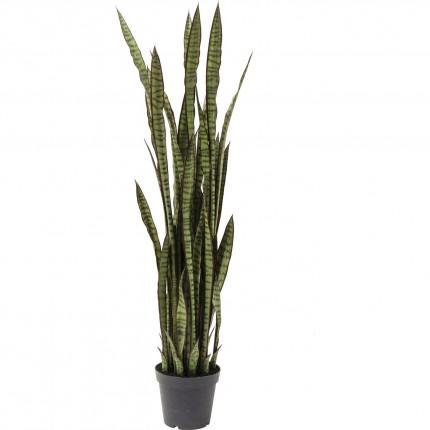 Plante décorative Sansewieria 155cm Kare Design