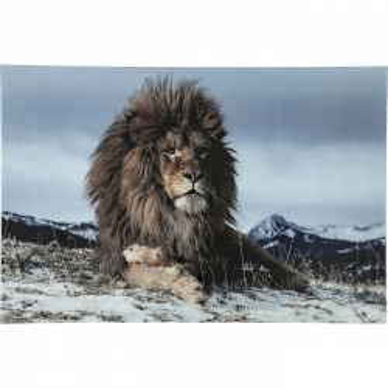 Tableau en verre Proud Lion 80x120cm Kare Design