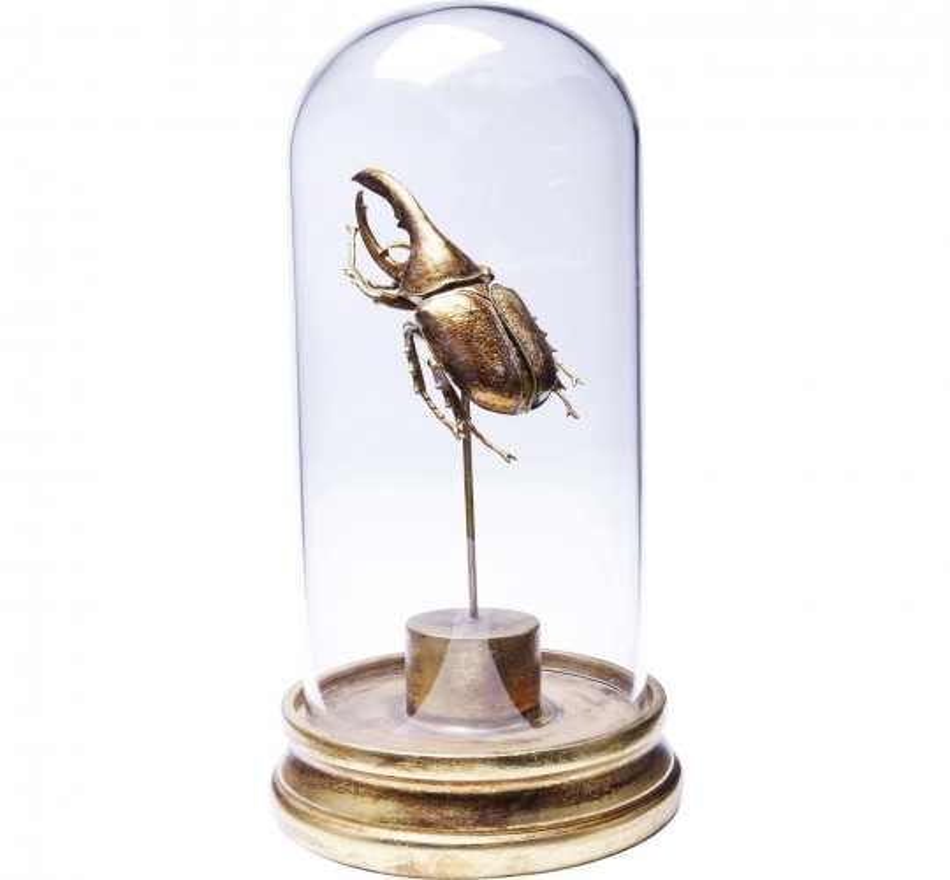 Déco Beetle insecte Uno 30cm Kare Design