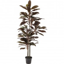 Plante décorative Cordyline 170cm Kare Design