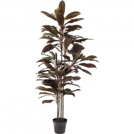 Plante décorative Cordyline 170cm Kare Design