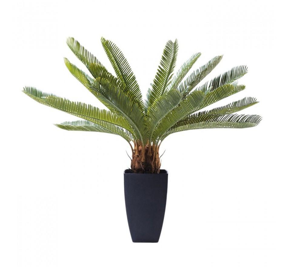Plante décorative Cycas 78cm Kare Design