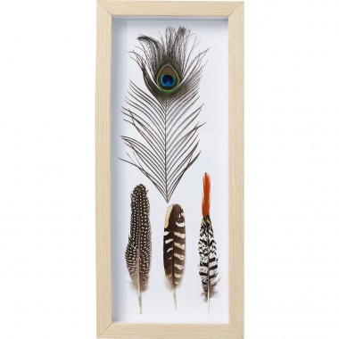 Tableau Frame Feathers Kare Design