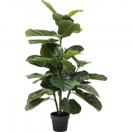 Plante décorative Figuier lyre 120cm Kare Design