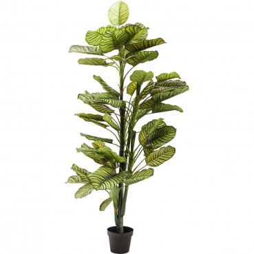 https://www.kare-click.fr/52954-thickbox/plante-decorative-green-apple-160cm-kare-design.jpg