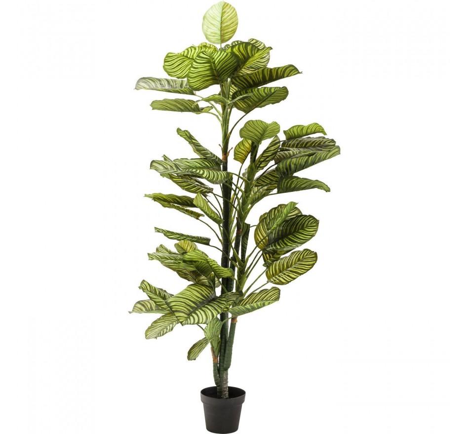Plante décorative Green Apple 160cm Kare Design