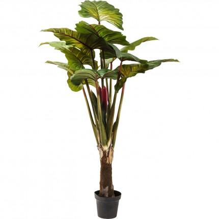 Plante décorative Rainbow Tree 160cm Kare Design