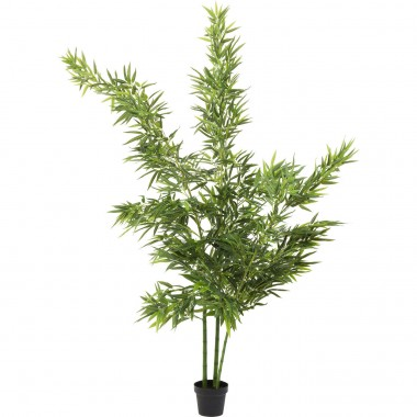 Plante décorative Bamboo Tree 200cm Kare Design