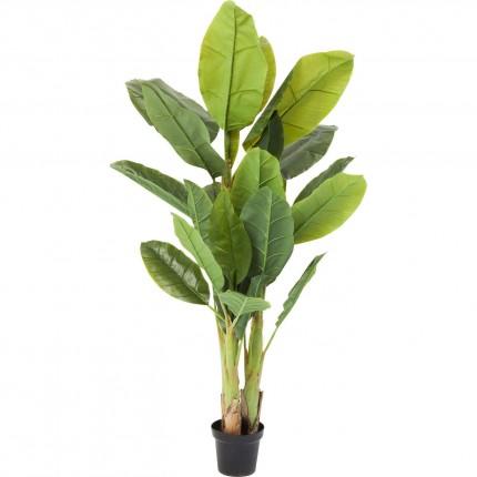 Plante décorative Bananier 180cm Kare Design