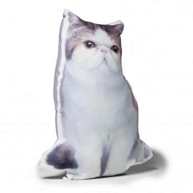 Coussin Shape Chat Kare Design