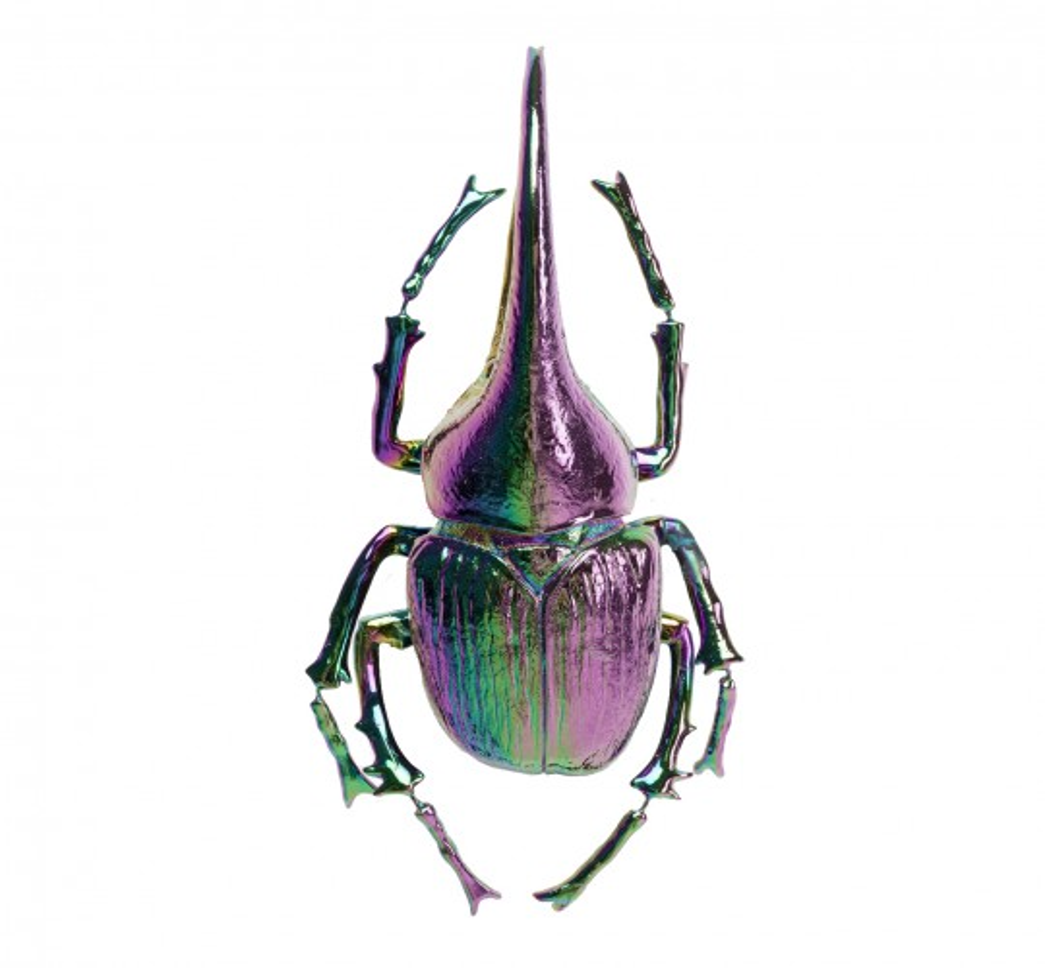 Décoration murale Herkules Beetle rainbow