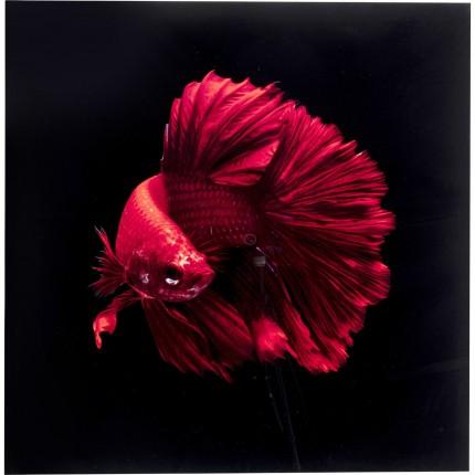 Tableau en verre poisson rouge 100x100cm Kare Design