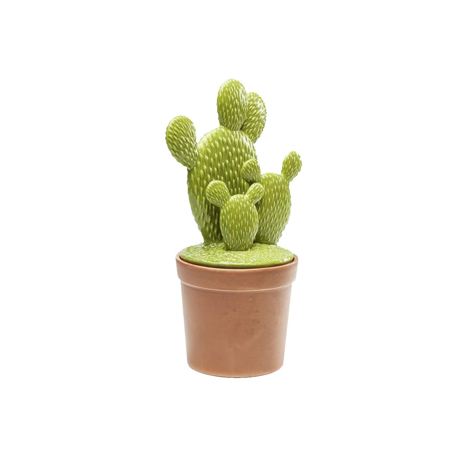 Idée déco la tendance cactus - KARE CLICK